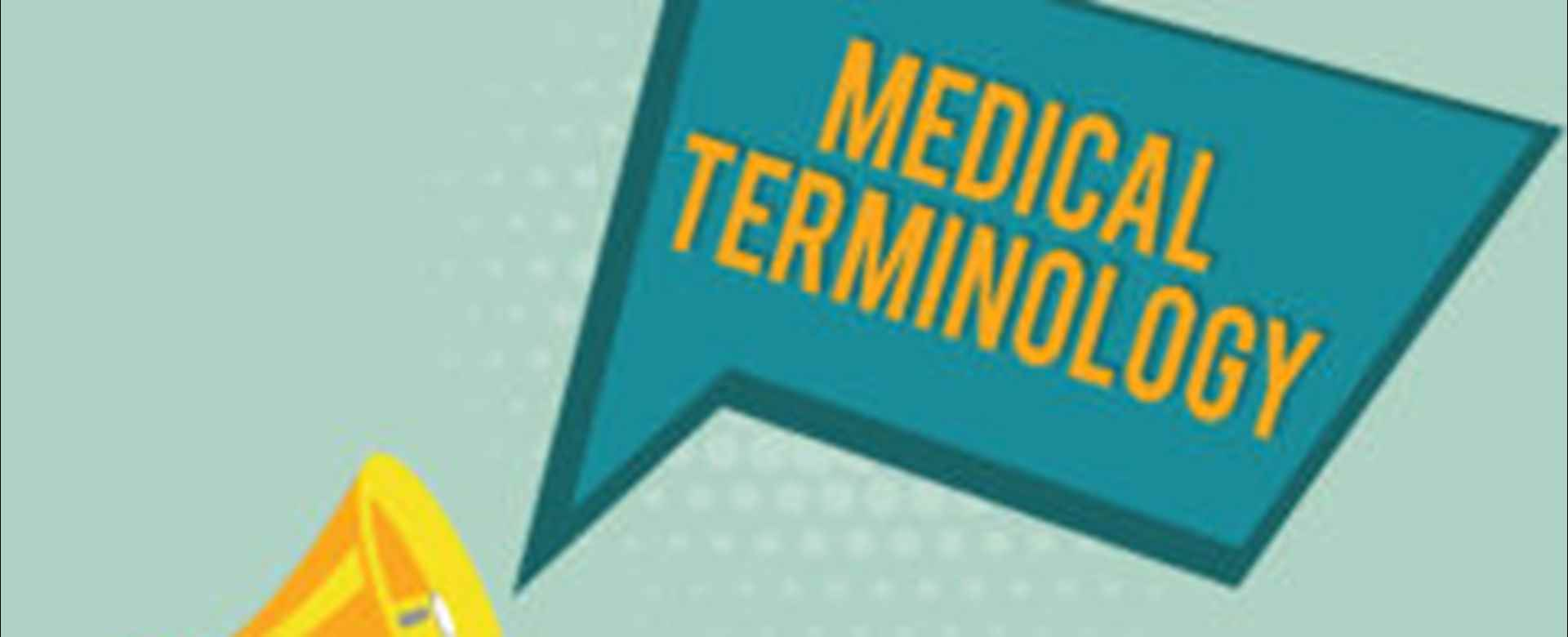 Decoding Lingo in the Healthcare Services Industry